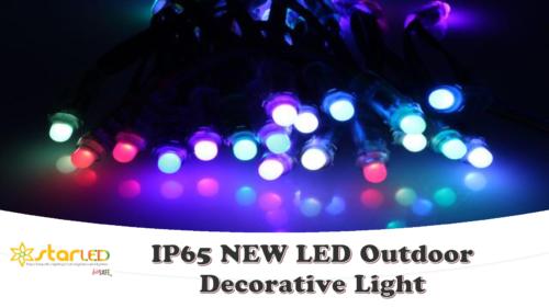 IP65 NEW LED Outdoor Decorative Light
